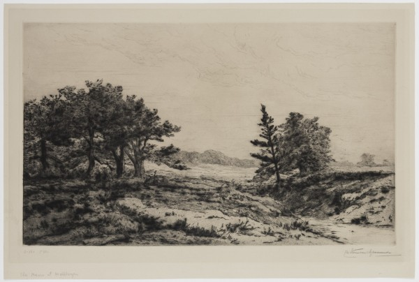 Carel Nicolaas Storm van s' Gravesande, Moors at Wolfhezen, 1880/1884, Drypoint printed in black ink on wove paper. Detroit Institute of Arts.