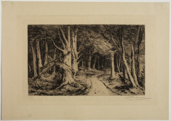 Carel Nicolaas Storm van s' Gravesande, Entrance to the Forest, 1880/1884, Drypoint printed in black ink on wove paper. Detroit Institute of Arts.
