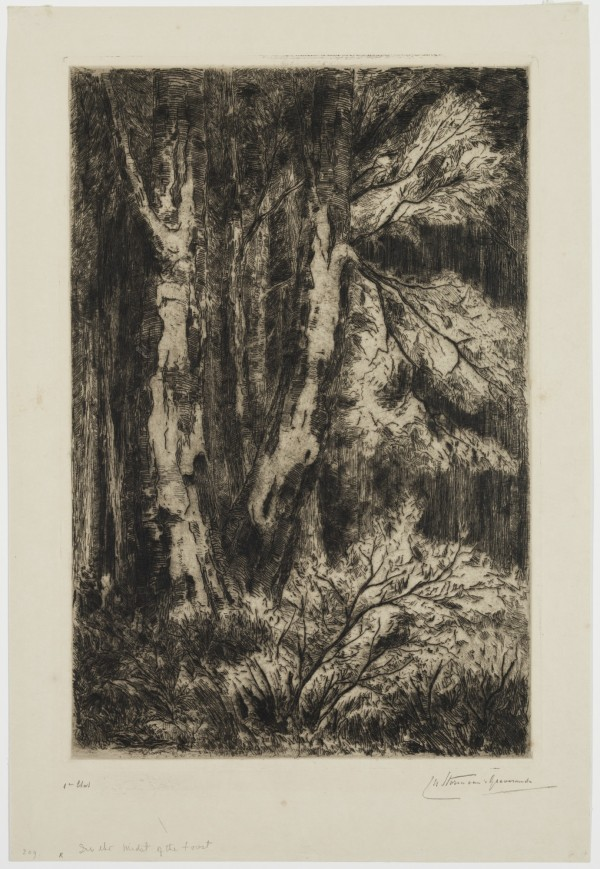 Carel Nicolaas Storm van s' Gravesande, In the Midst of the Forest, 1884/1887, Etching and drypoint printed in brown ink on japan paper. Detroit Institute of Arts.