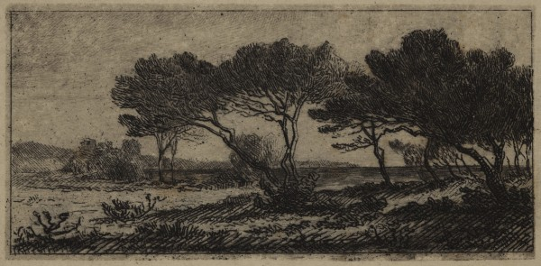 Carel Nicolaas Storm van s' Gravesande, Seashore Pines in the Vicinity of Hyeres, c. 1872, Etching printed in black ink on japan paper. Detroit Institute of Arts.