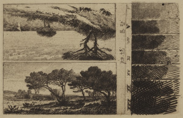 Carel Nicolaas Storm van s' Gravesande, Seashore Pines in the Vicinity of Hyeres (and) Parquerolles, c. 1872, Etching printed in black ink on laid paper. Detroit Institute of Arts.