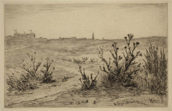 Carel Nicolaas Storm van s' Gravesande, Brambles on the Downs, 1887/1889, Drypoint printed in brown ink on laid paper. Detroit Institute of Arts.